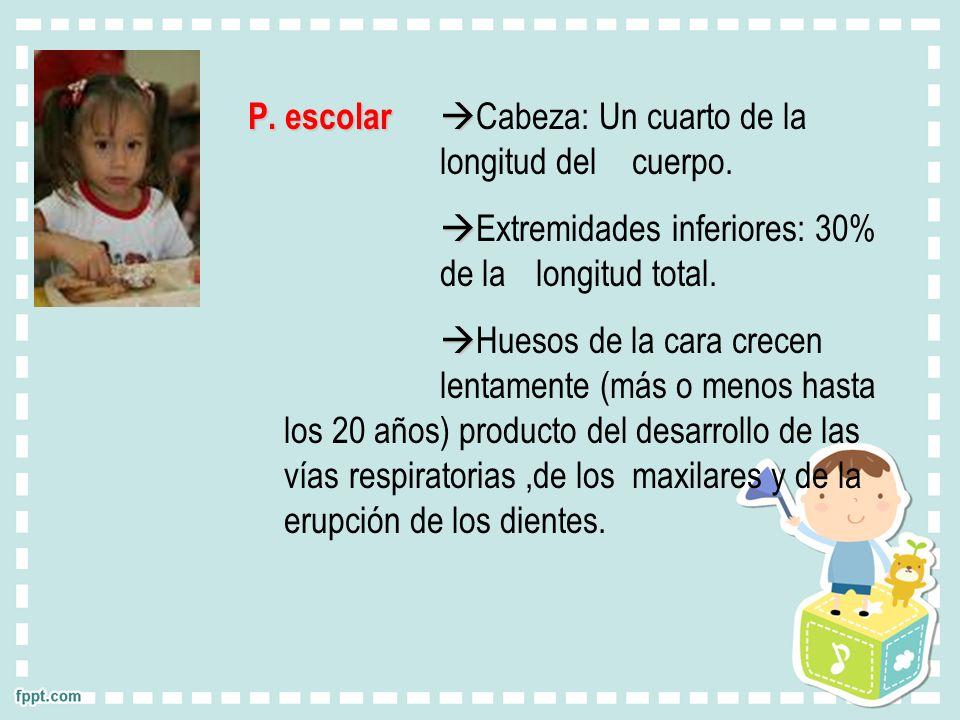 P. escolar Cabeza: Un cuarto de la longitud del cuerpo.