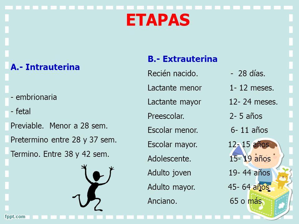 ETAPAS B.- Extrauterina A.- Intrauterina Recién nacido. - 28 días.