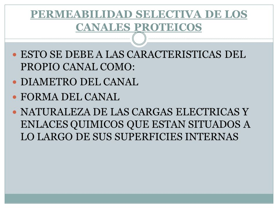 PERMEABILIDAD SELECTIVA DE LOS CANALES PROTEICOS