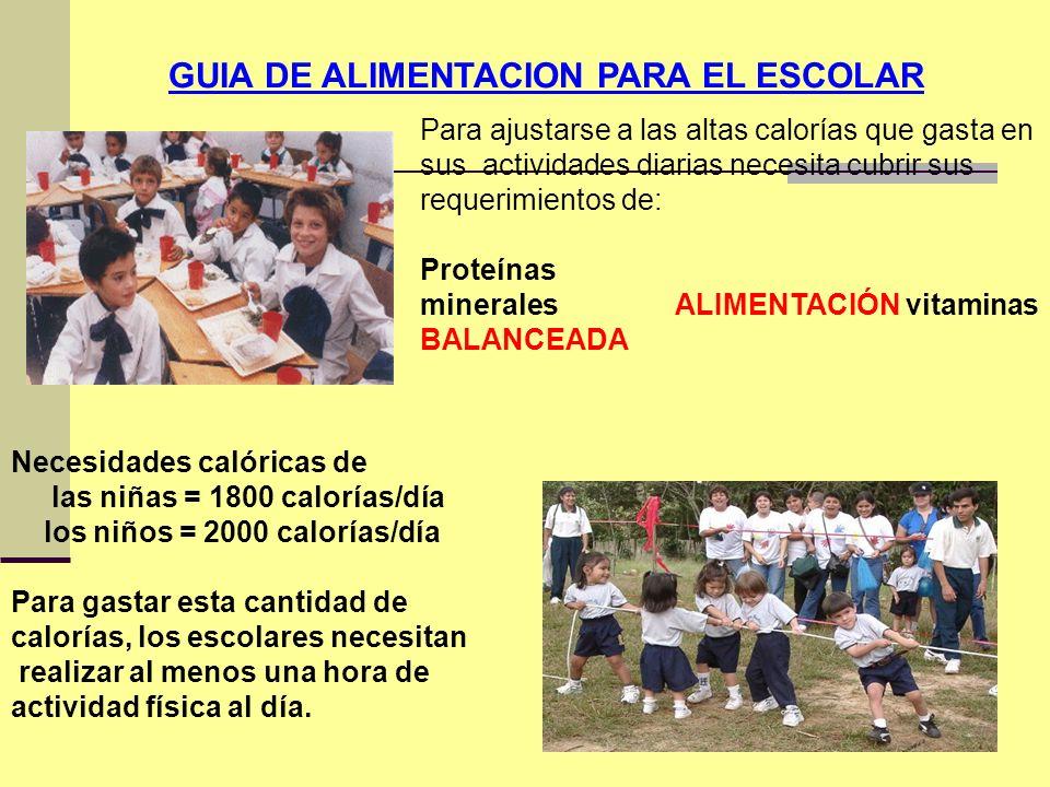 GUIA DE ALIMENTACION PARA EL ESCOLAR