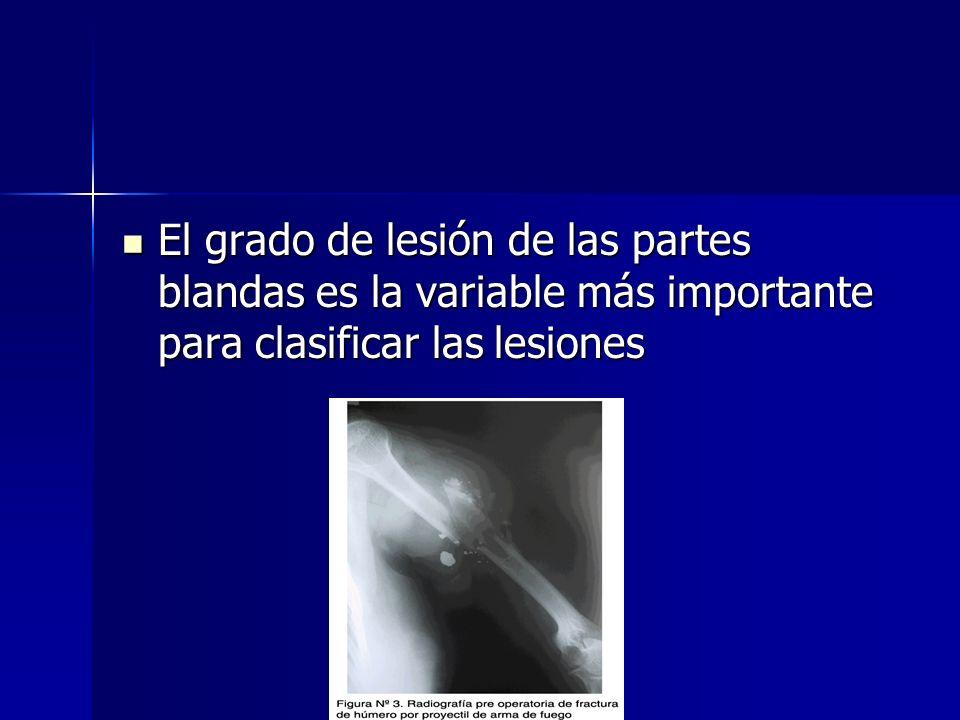 El grado de lesión de las partes blandas es la variable más importante para clasificar las lesiones