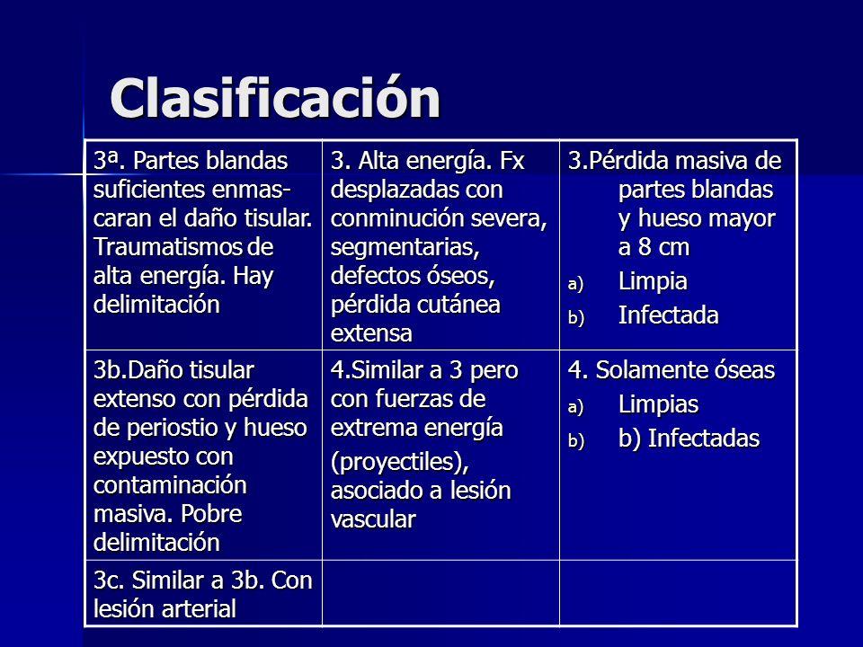 Clasificación 3ª. Partes blandas suficientes enmas-caran el daño tisular. Traumatismos de alta energía. Hay delimitación.