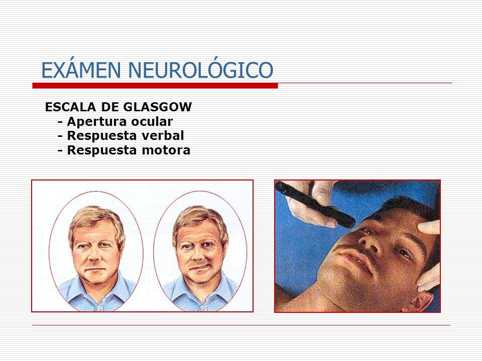 EXÁMEN NEUROLÓGICO ESCALA DE GLASGOW - Apertura ocular