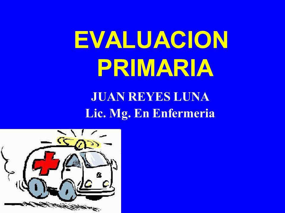 JUAN REYES LUNA Lic. Mg. En Enfermeria