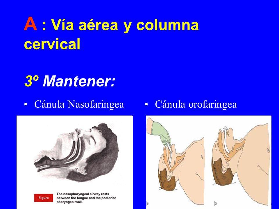 A : Vía aérea y columna cervical 3º Mantener:
