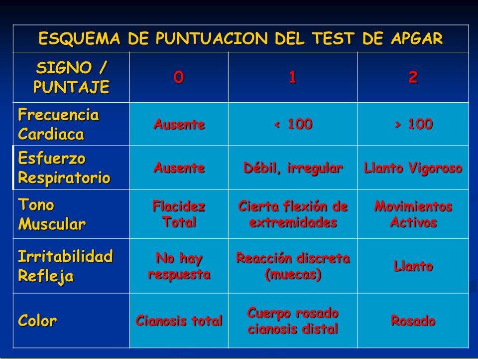 ESQUEMA DE PUNTUACION DEL TEST DE APGAR SIGNO / PUNTAJE 1 2