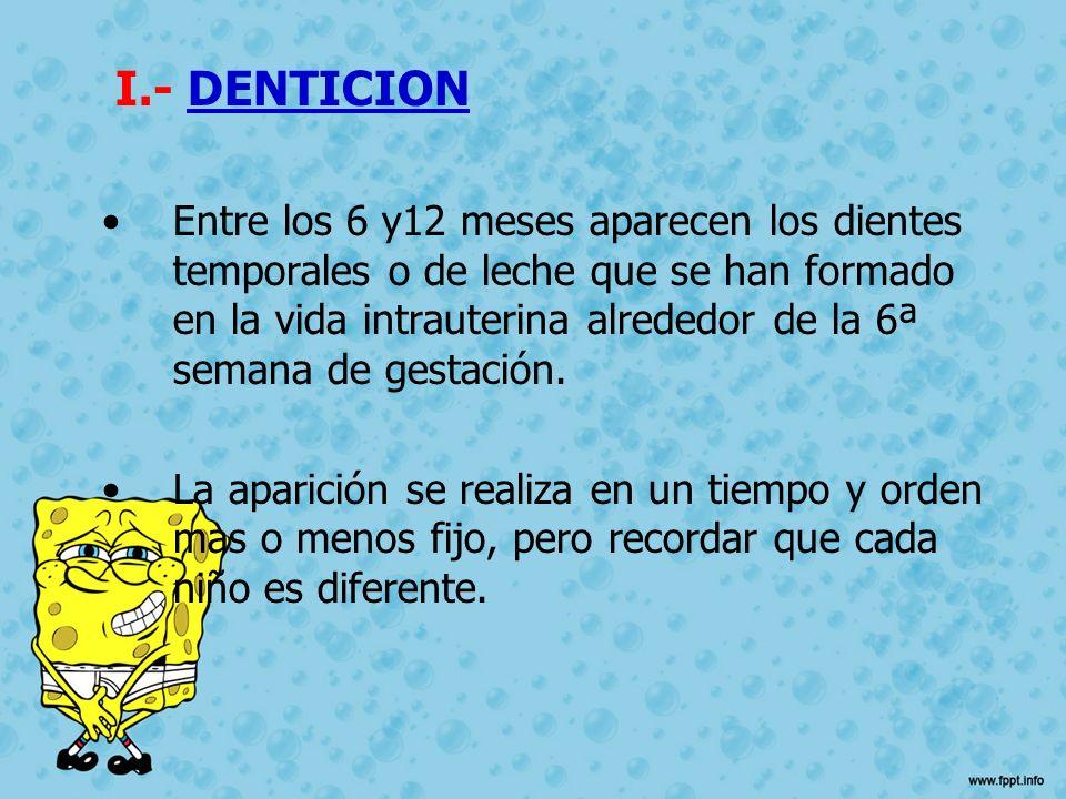 I.- DENTICION