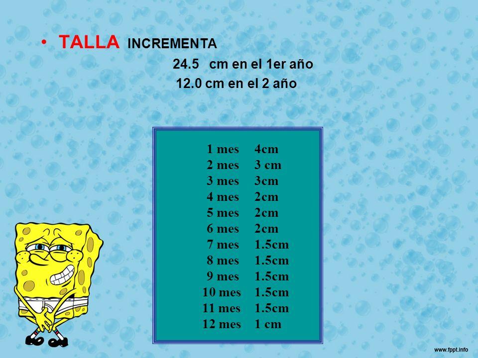 TALLA INCREMENTA 24.5 cm en el 1er año 12.0 cm en el 2 año 1 mes 4cm