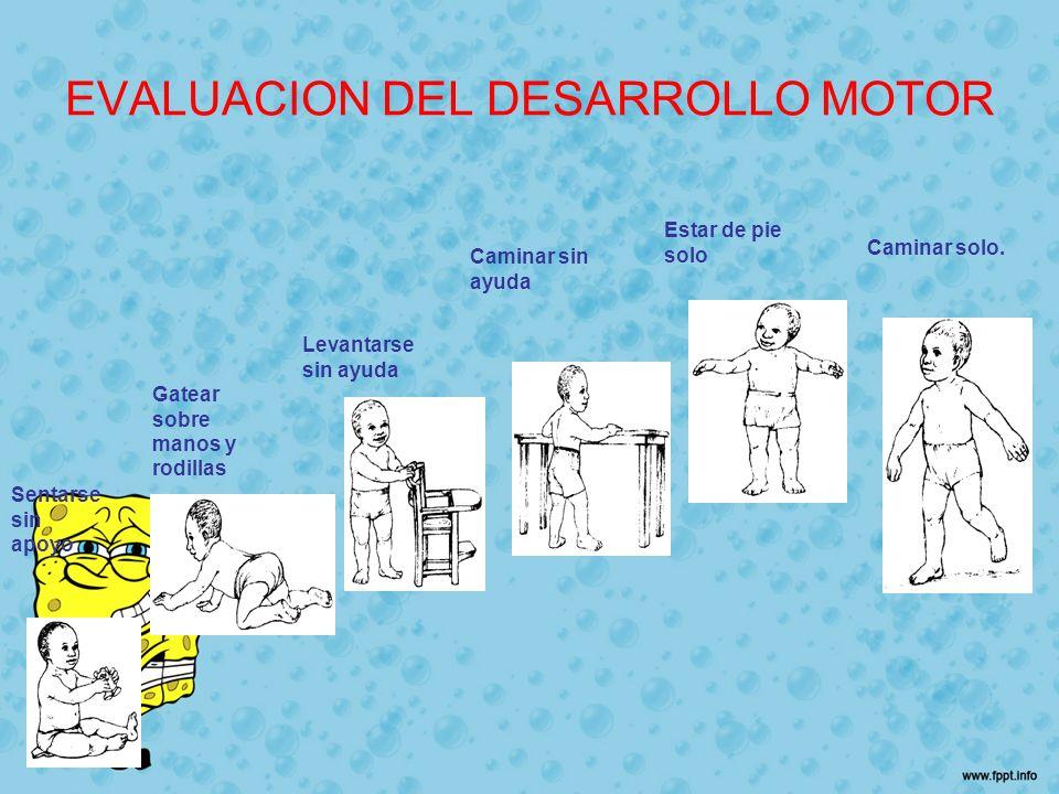 EVALUACION DEL DESARROLLO MOTOR