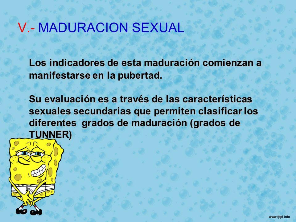 V.- MADURACION SEXUAL Los indicadores de esta maduración comienzan a manifestarse en la pubertad.