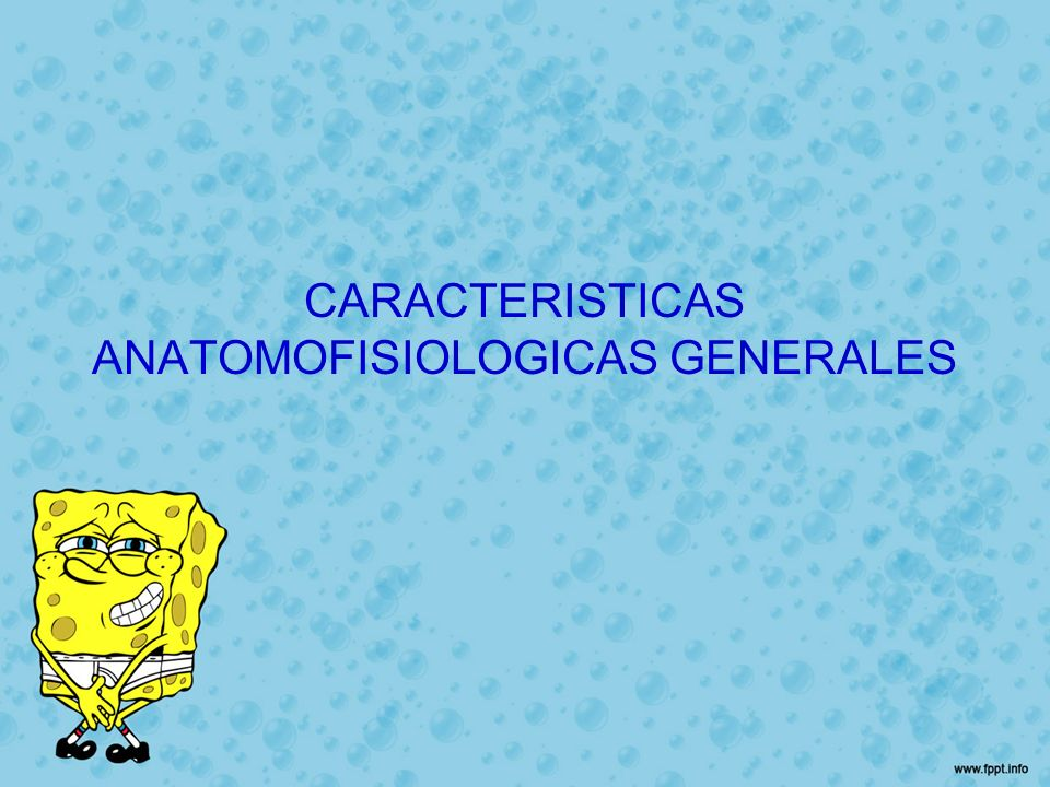 CARACTERISTICAS ANATOMOFISIOLOGICAS GENERALES