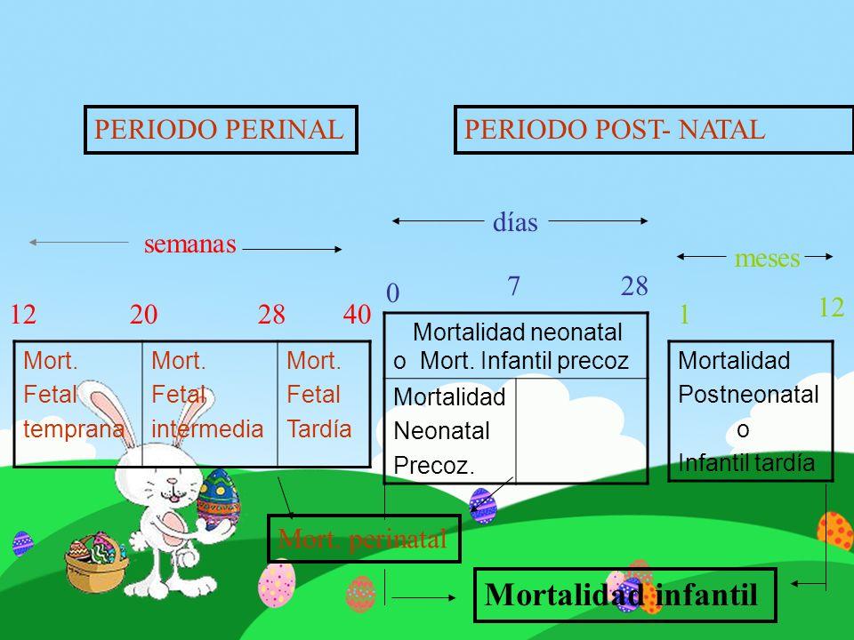 Mortalidad infantil PERIODO PERINAL PERIODO POST- NATAL días semanas