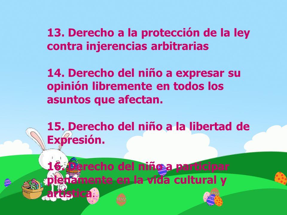 13. Derecho a la protección de la ley contra injerencias arbitrarias