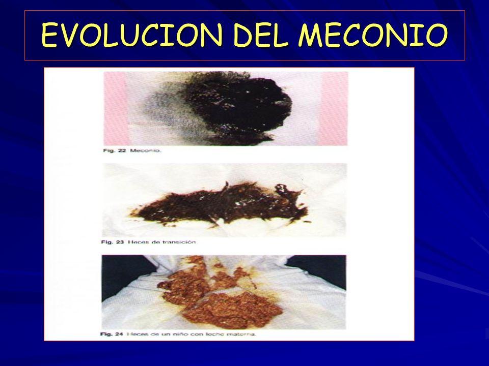 EVOLUCION DEL MECONIO