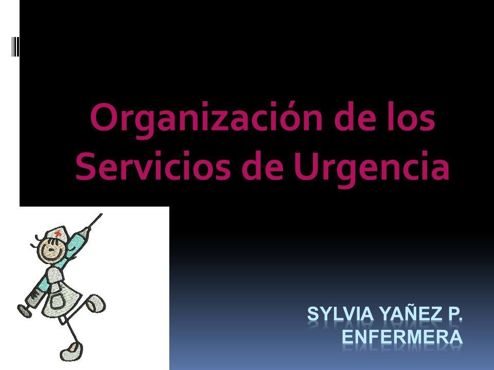 Sylvia yañez P. Enfermera