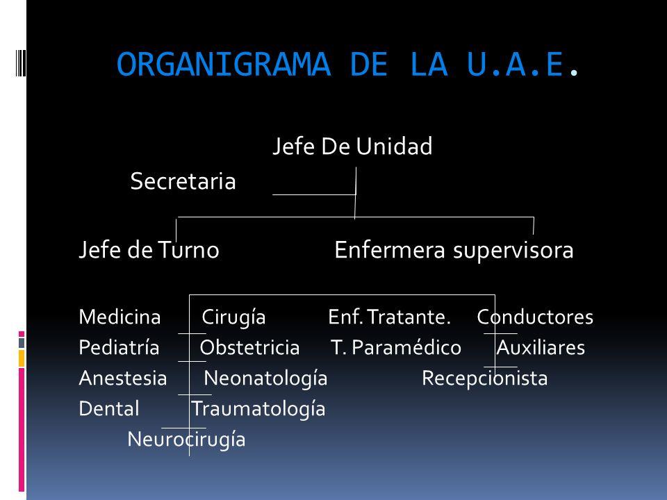 ORGANIGRAMA DE LA U.A.E. Jefe De Unidad Secretaria