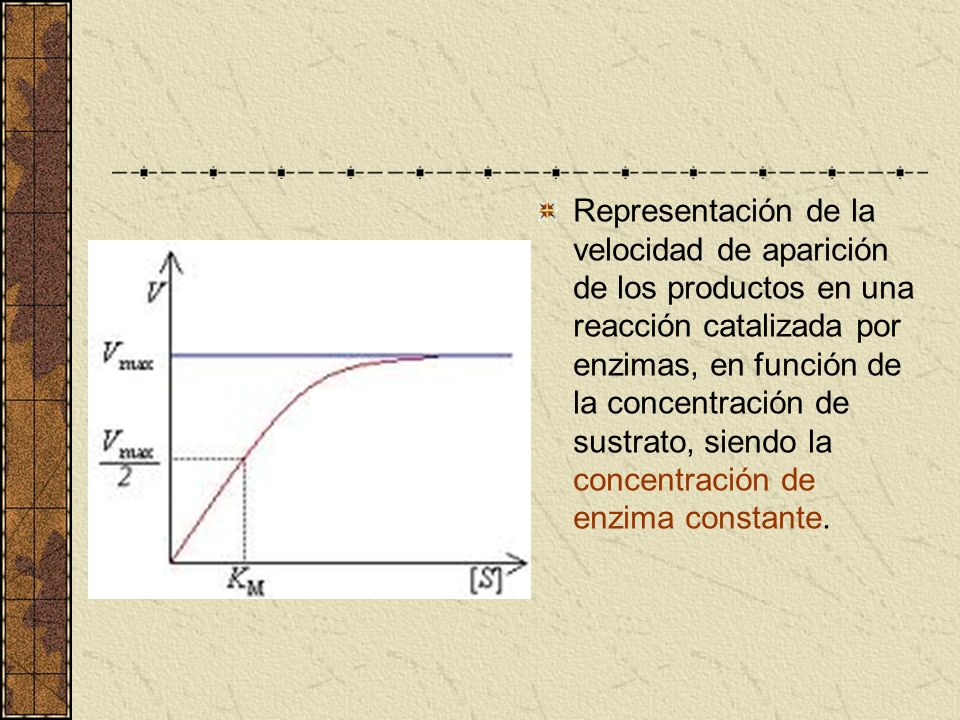 Representación de la velocidad de aparición de los productos en una reacción catalizada por enzimas, en función de la concentración de sustrato, siendo la concentración de enzima constante.