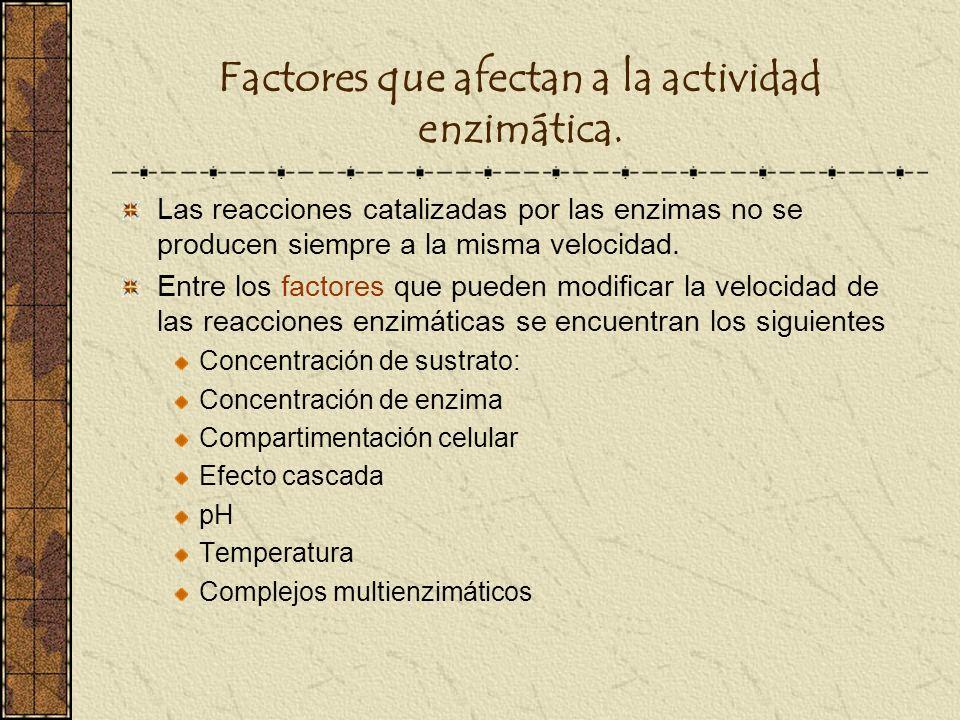 Factores que afectan a la actividad enzimática.