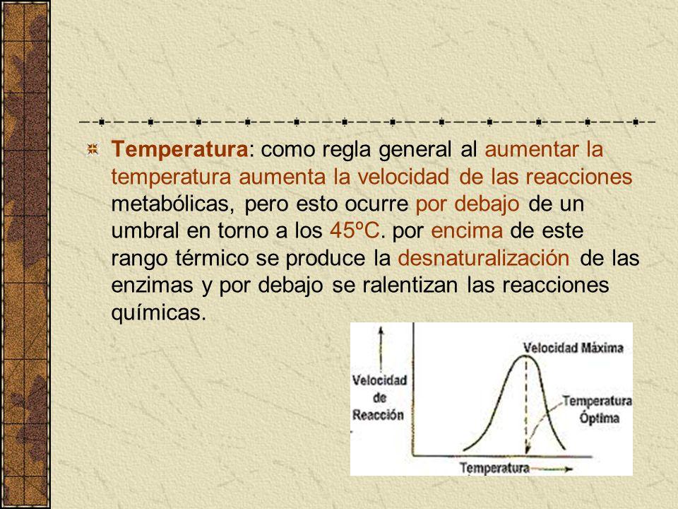 Temperatura: como regla general al aumentar la temperatura aumenta la velocidad de las reacciones metabólicas, pero esto ocurre por debajo de un umbral en torno a los 45ºC.