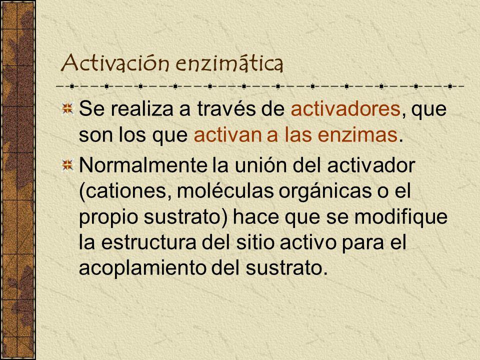 Activación enzimática
