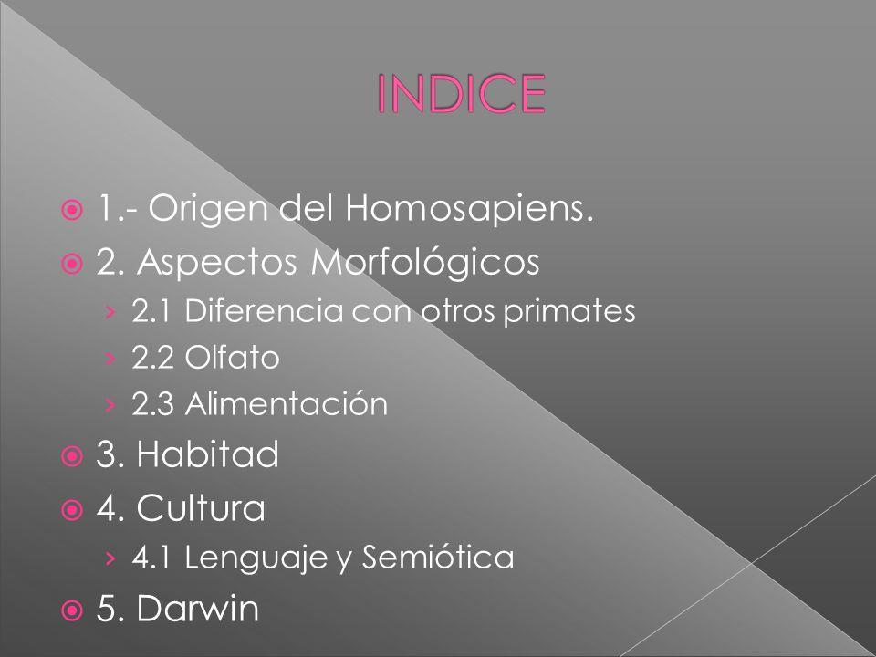 1.- Origen del Homosapiens. 2. Aspectos Morfológicos