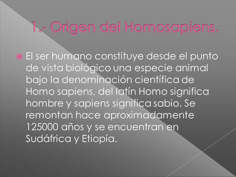 El ser humano constituye desde el punto de vista biológico una especie animal bajo la denominación científica de Homo sapiens, del latín Homo significa hombre y sapiens significa sabio.