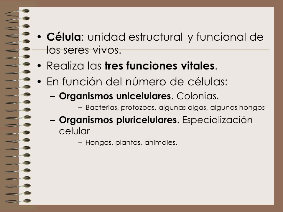 Célula: unidad estructural y funcional de los seres vivos.