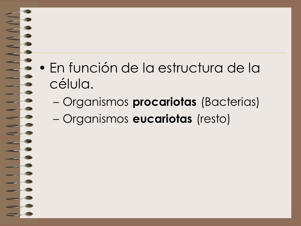 En función de la estructura de la célula.