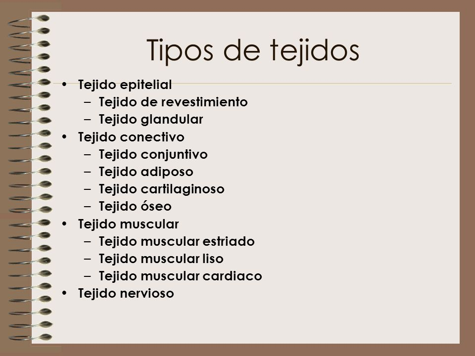 Tipos de tejidos Tejido epitelial Tejido de revestimiento