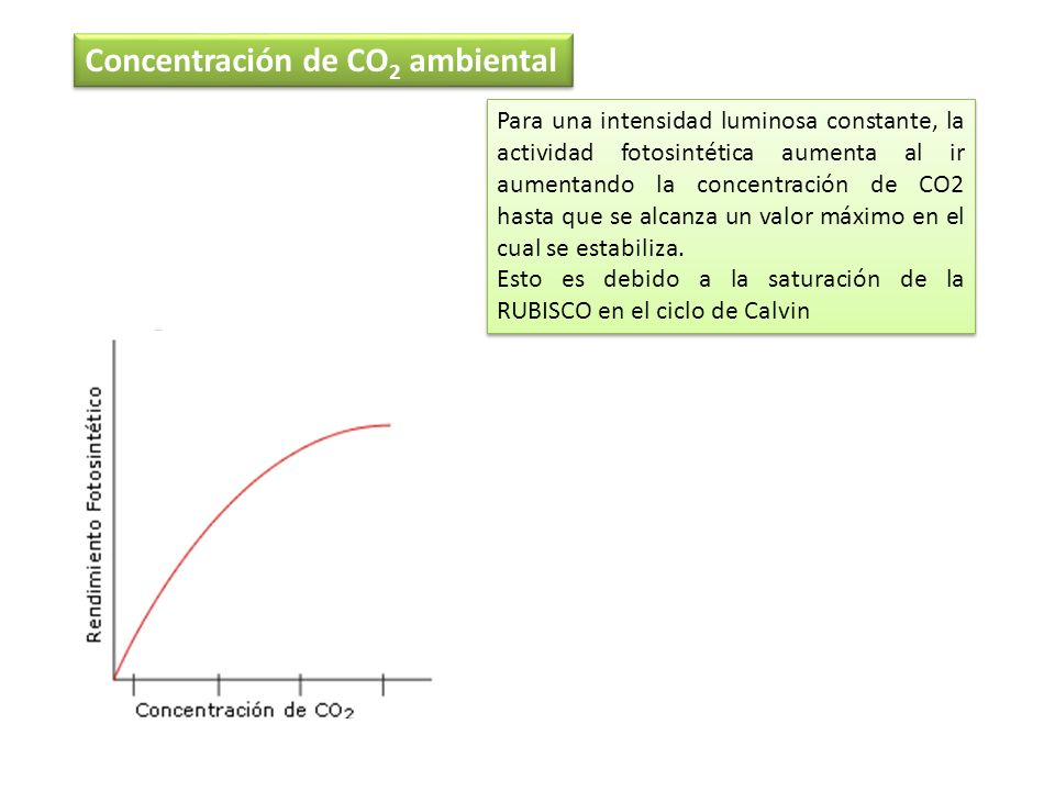 Concentración de CO2 ambiental
