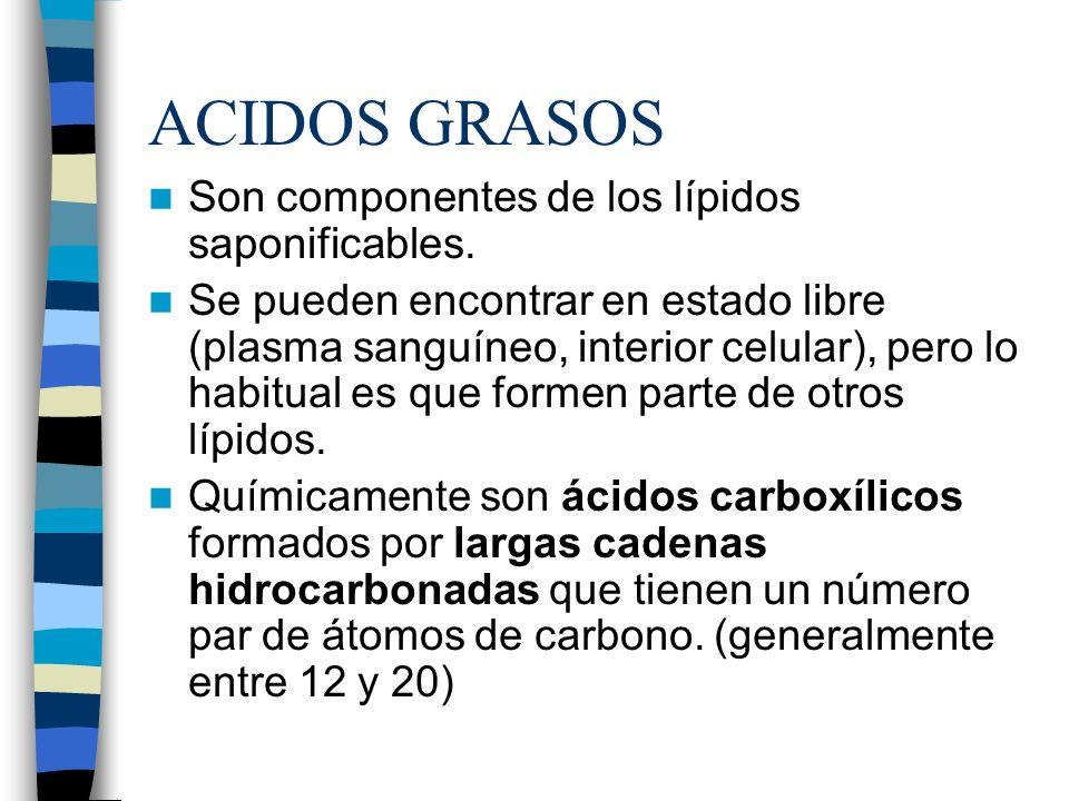 ACIDOS GRASOS Son componentes de los lípidos saponificables.
