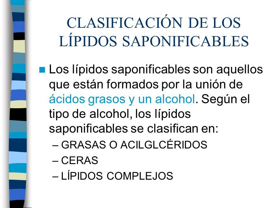 CLASIFICACIÓN DE LOS LÍPIDOS SAPONIFICABLES