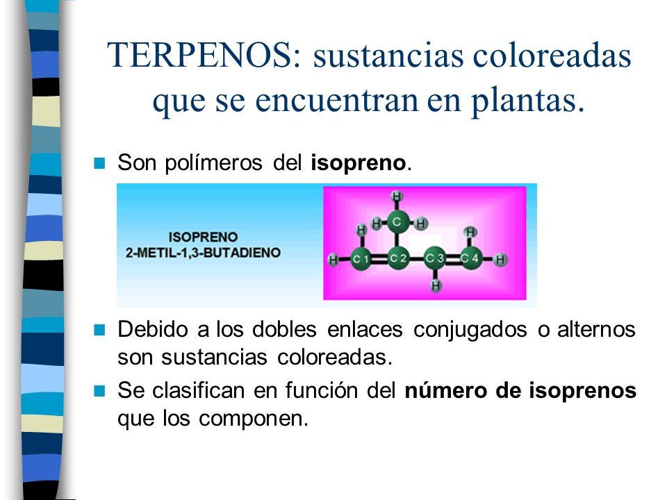 TERPENOS: sustancias coloreadas que se encuentran en plantas.