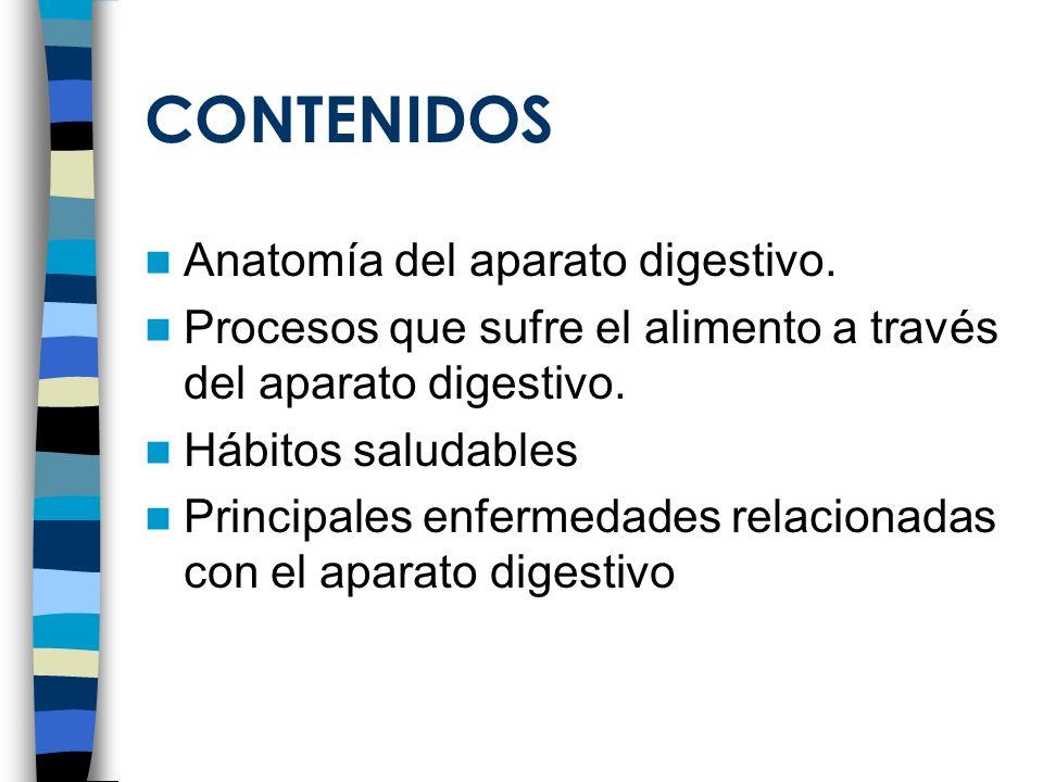 CONTENIDOS Anatomía del aparato digestivo.