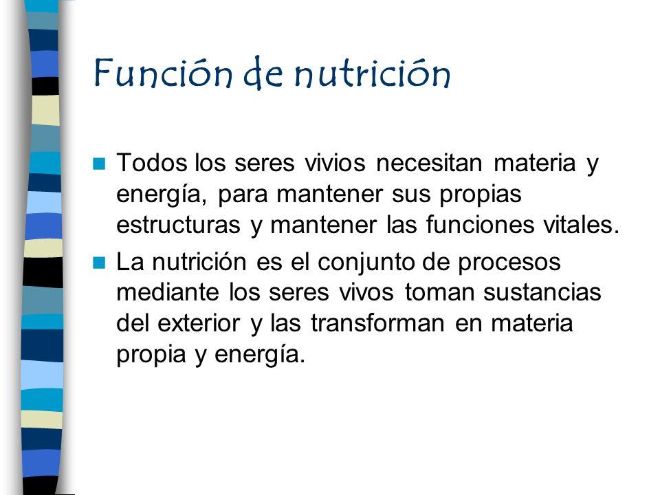 Función de nutrición Todos los seres vivios necesitan materia y energía, para mantener sus propias estructuras y mantener las funciones vitales.
