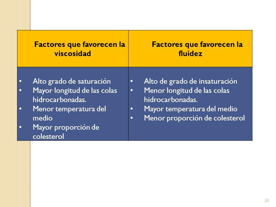 Factores que favorecen la viscosidad Factores que favorecen la fluidez