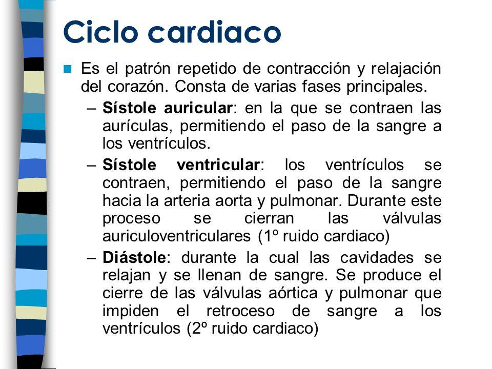 Ciclo cardiaco Es el patrón repetido de contracción y relajación del corazón. Consta de varias fases principales.