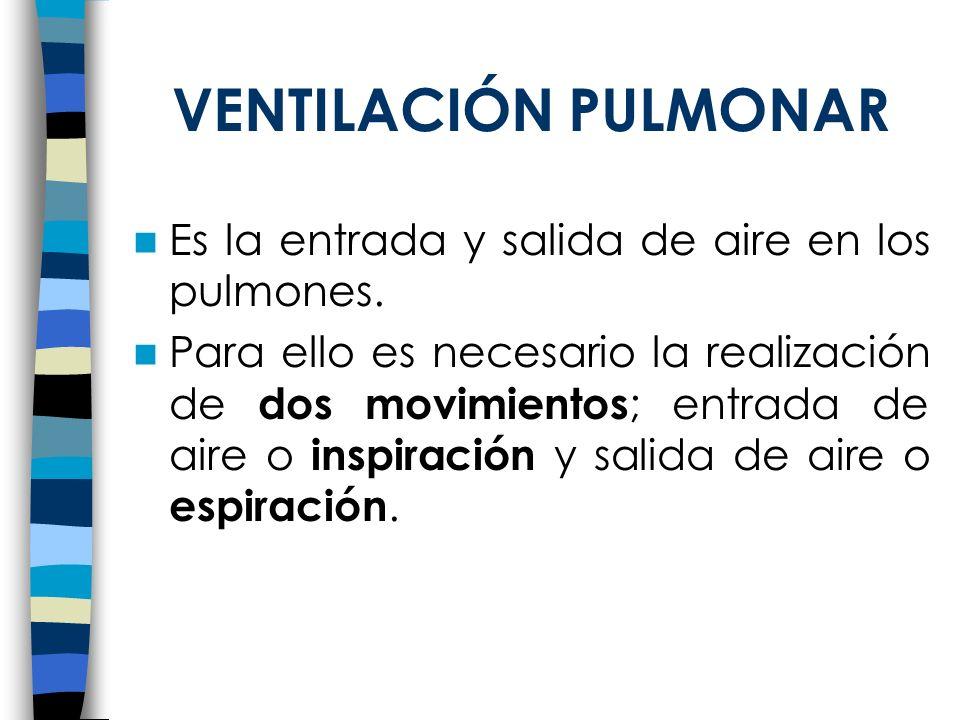 VENTILACIÓN PULMONAR Es la entrada y salida de aire en los pulmones.