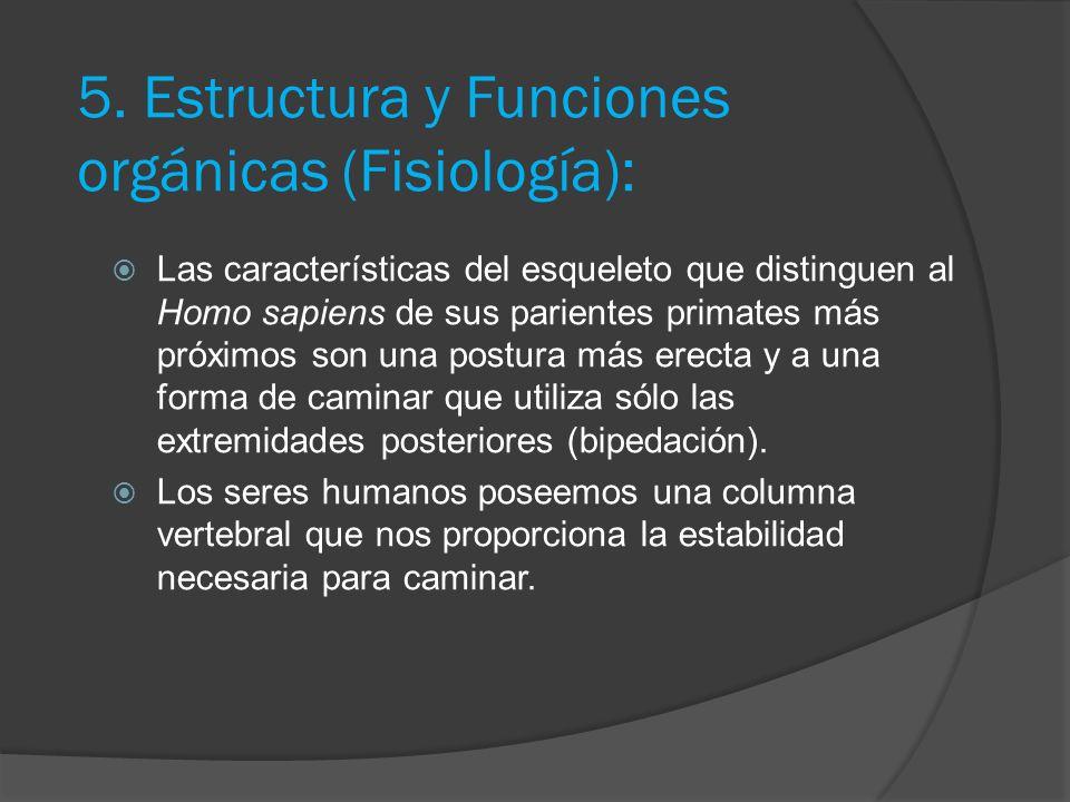 5. Estructura y Funciones orgánicas (Fisiología):