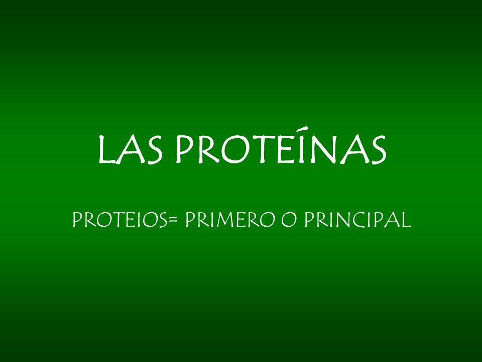 PROTEIOS= PRIMERO O PRINCIPAL