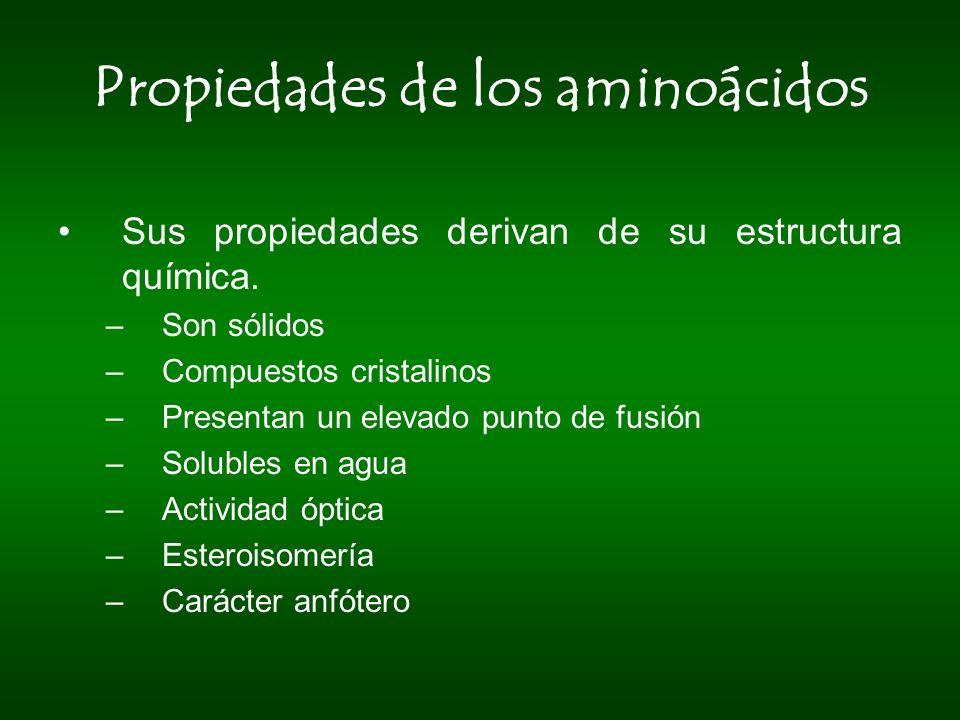 Propiedades de los aminoácidos