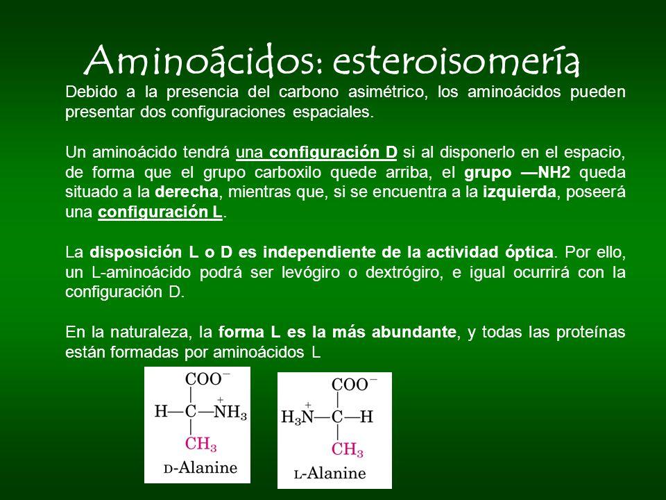 Aminoácidos: esteroisomería