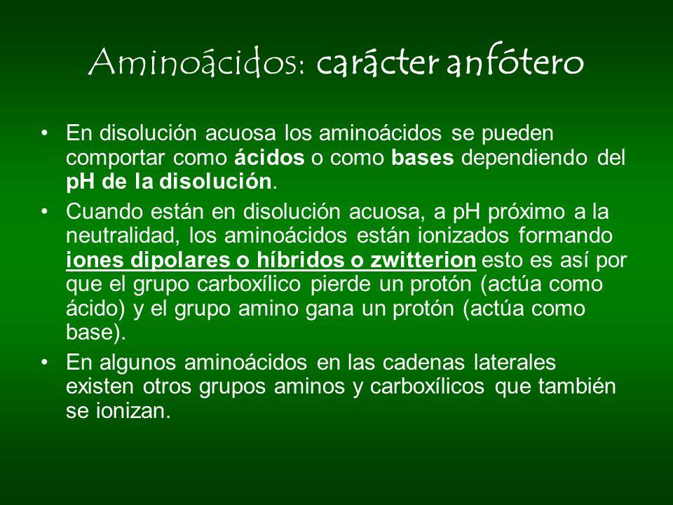Aminoácidos: carácter anfótero