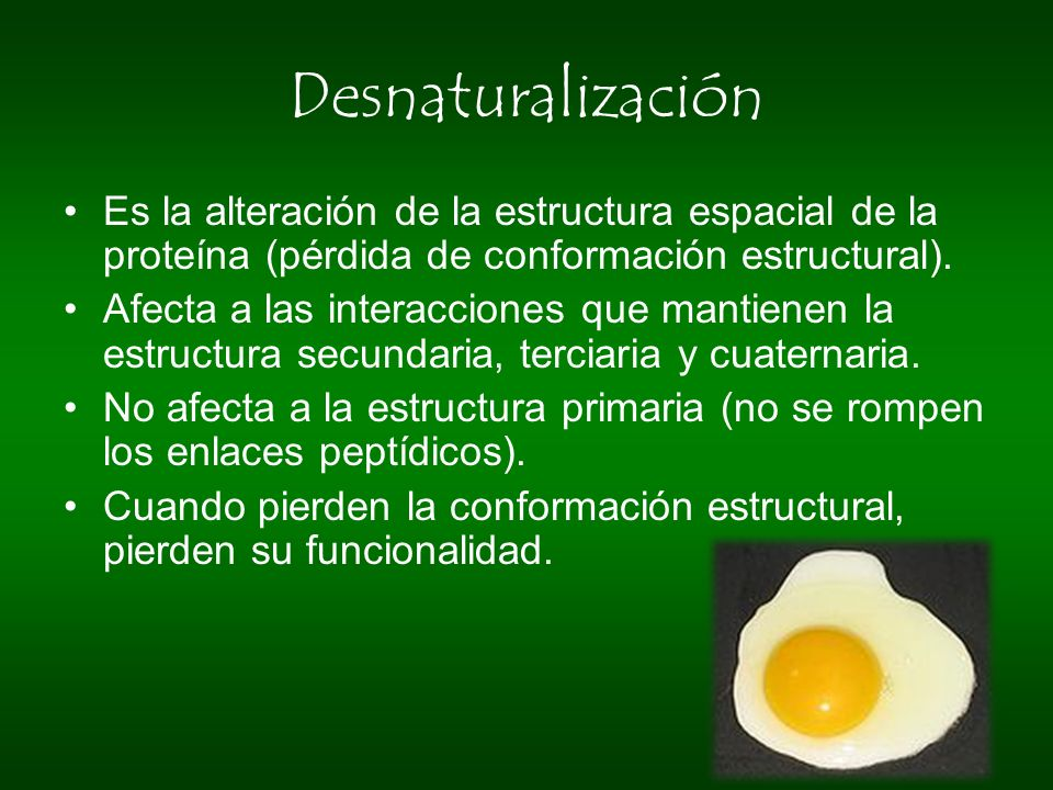 Desnaturalización Es la alteración de la estructura espacial de la proteína (pérdida de conformación estructural).