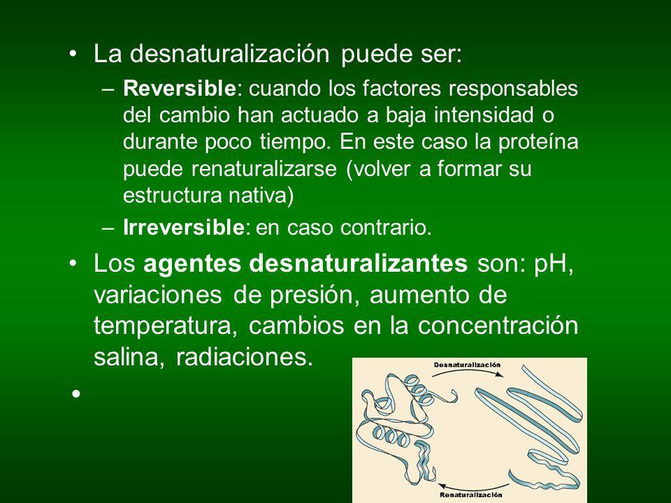La desnaturalización puede ser: