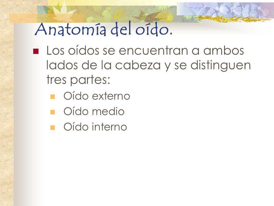 Anatomía del oído. Los oídos se encuentran a ambos lados de la cabeza y se distinguen tres partes: Oído externo.