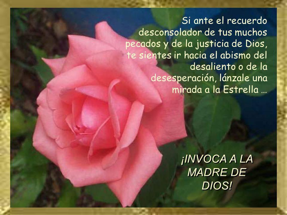 ¡INVOCA A LA MADRE DE DIOS!