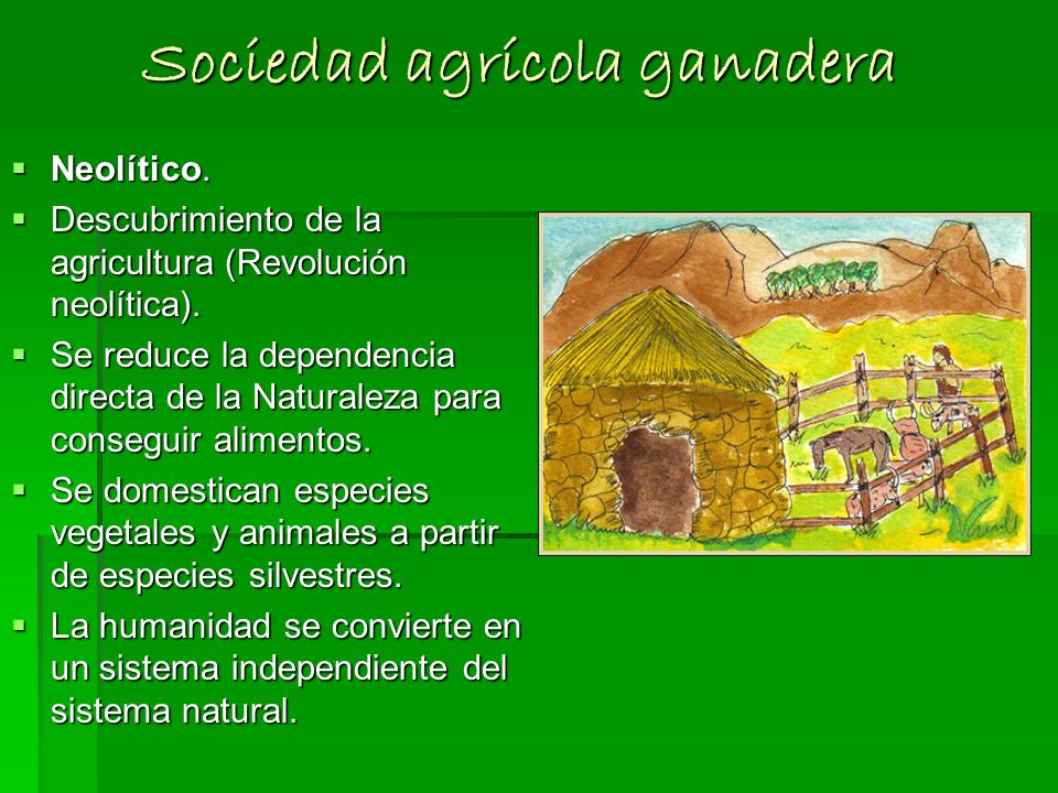 Sociedad agrícola ganadera