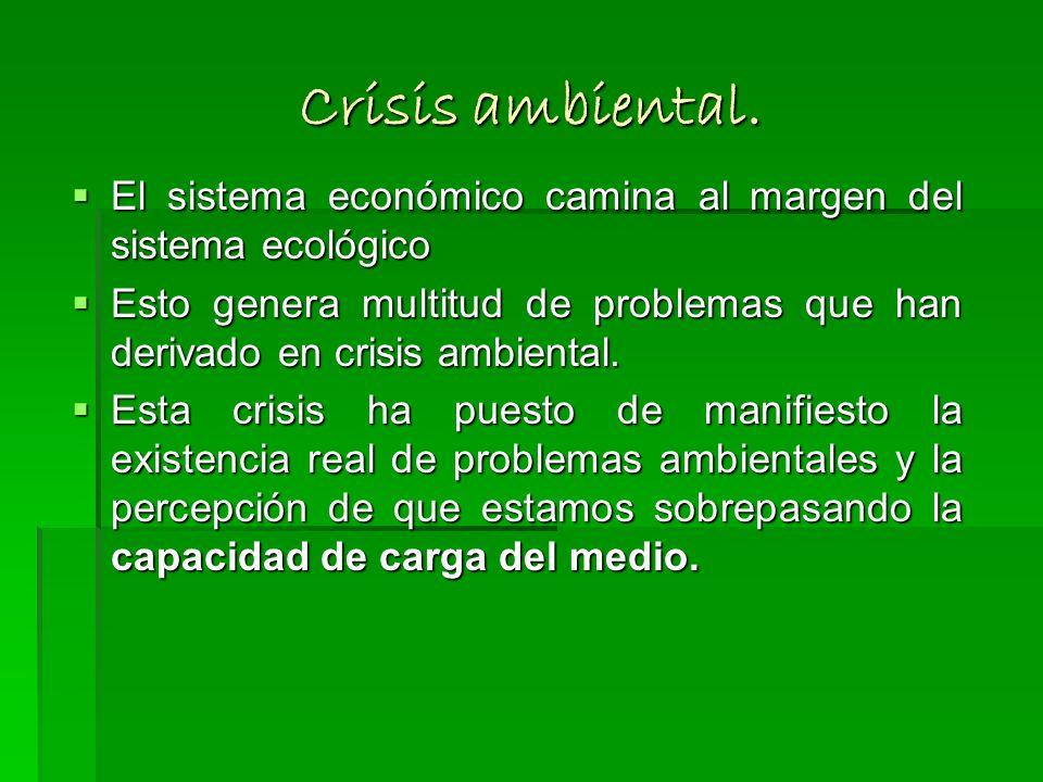 Crisis ambiental. El sistema económico camina al margen del sistema ecológico.