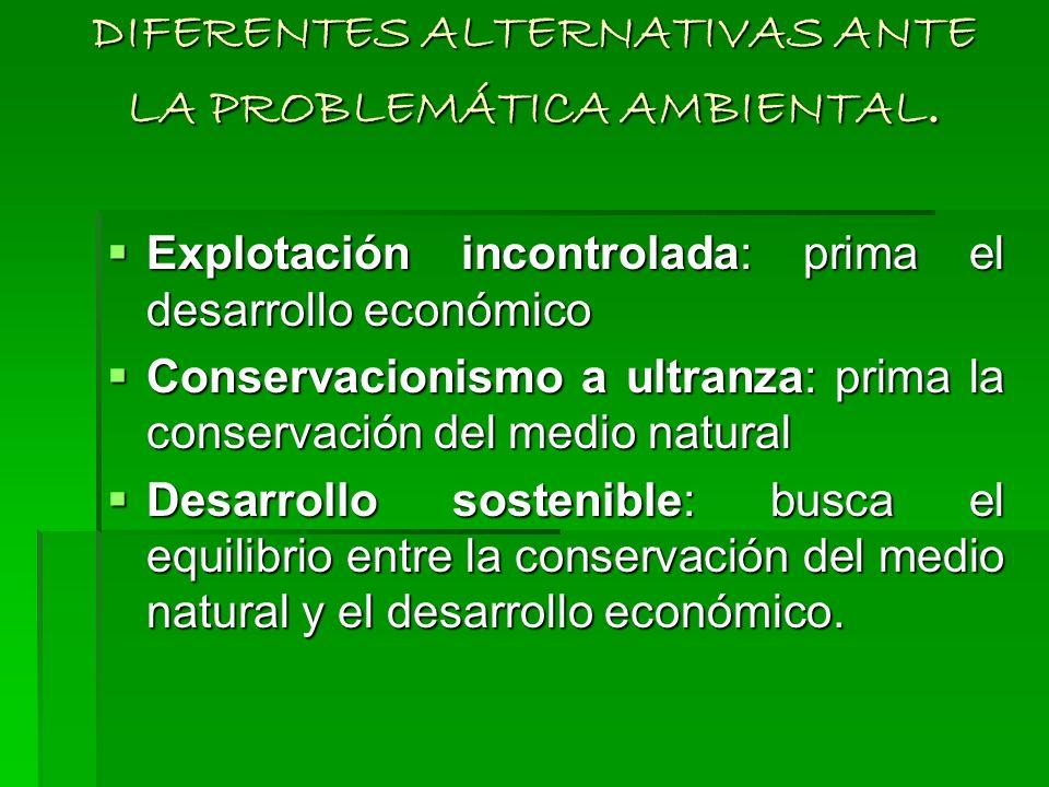 DIFERENTES ALTERNATIVAS ANTE LA PROBLEMÁTICA AMBIENTAL.